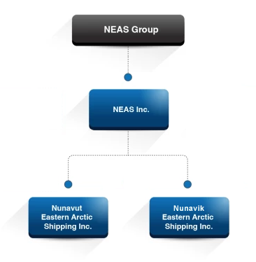 NEAS Corporate Structure